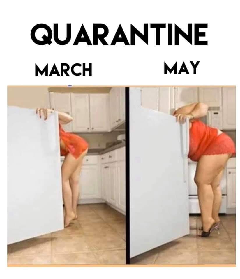 798115d1585159049-quarantine-image001.jpg