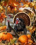 08964814dc1790c803fa79a4a3dcd74f--thanksgiving-turkey-happy-thanksgiving.jpg
